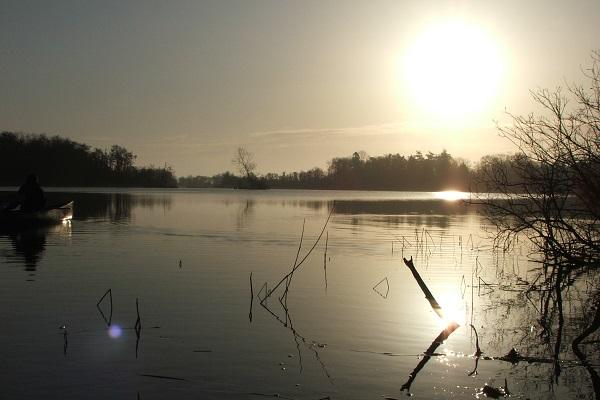 Fairhaven Woodland and Water Garden Broad