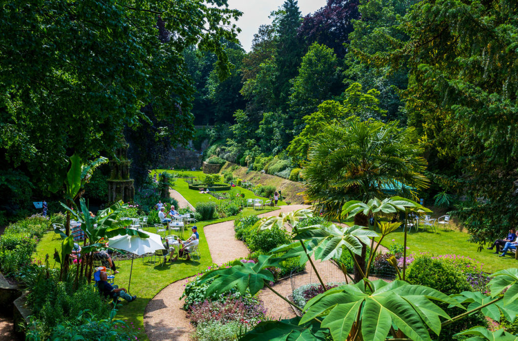 There's plenty of reasons to head out into the city this summer, like a visit to The Plantation Garden