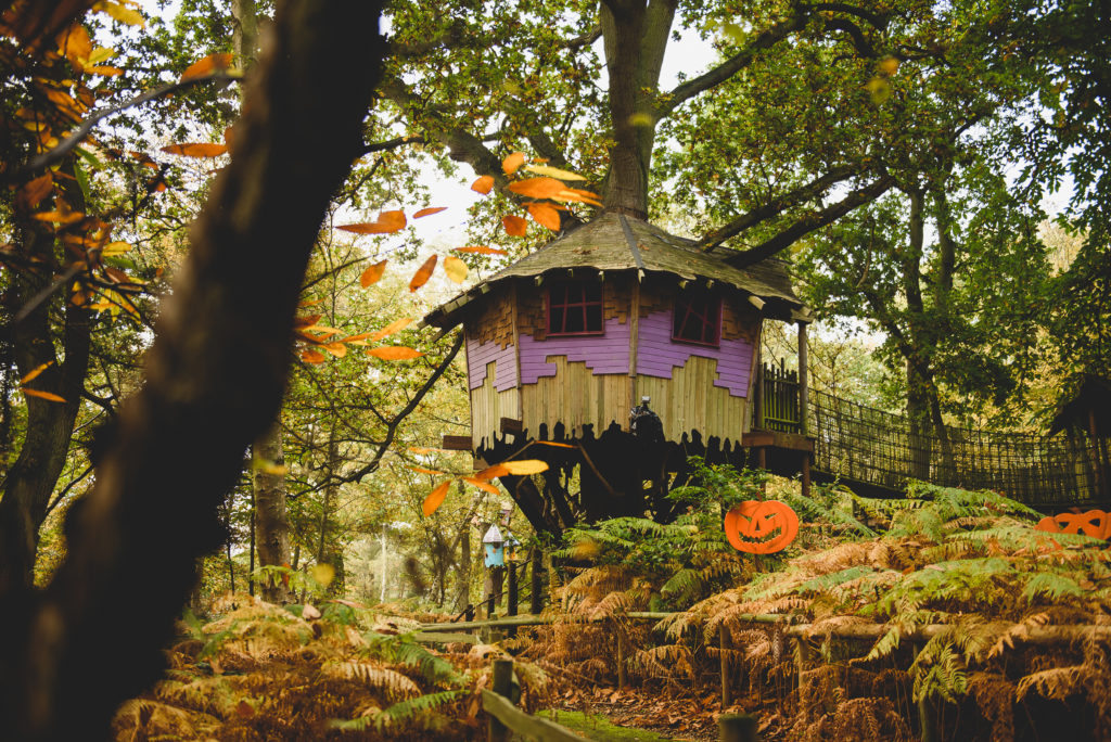 BeWILDerwood is the perfect place for an autumn walk or Halloween adventure