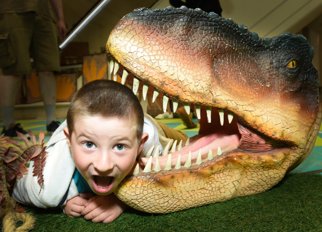 Dinosaurs are coming to Castle Quarter